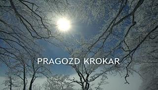 Pragozd krokar - naslovnica filma