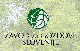 zavod za gozdove Slovenije - logo z ozadjem iz dreves